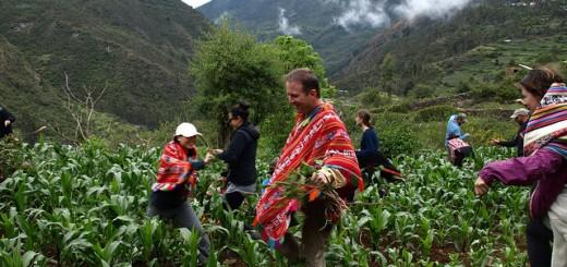 Phil Murphy in Peru.jpg