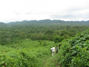 View from the top of the hill and the cacao farm