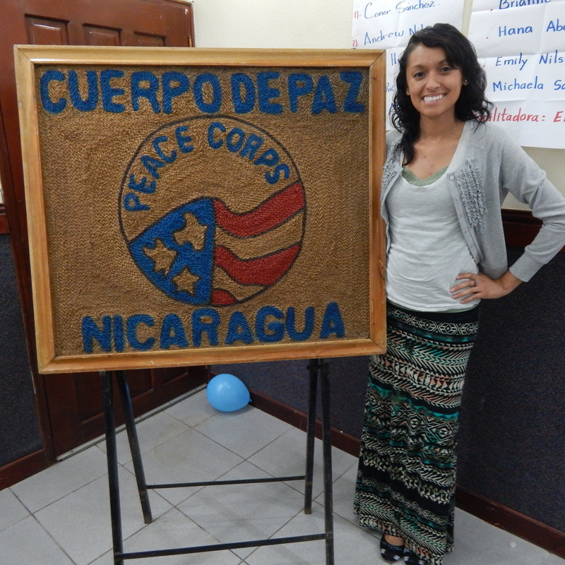 Peace corps assignments