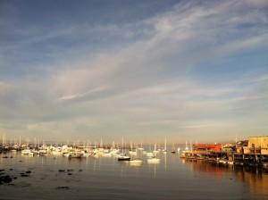 cropped-Monterey-Harbor.jpg