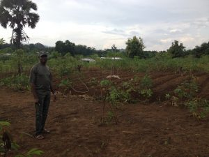 Mr. Ogolong in his field in Bafia