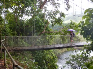 The suspended bridge on the way to the Atyas