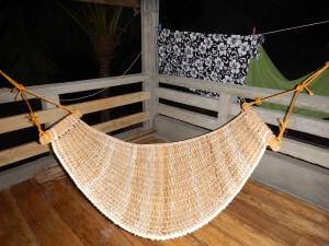 My native hammock on the terrace