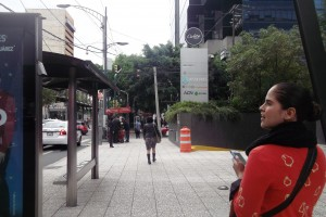 Jessica and I spent half of the morning wondering around Insurgentes. It seemed like it had no end as it crosses the whole city from North to South.