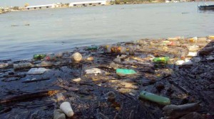 The Panuco River tops list of most polluted rivers in the country.