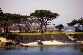 Monterey 8