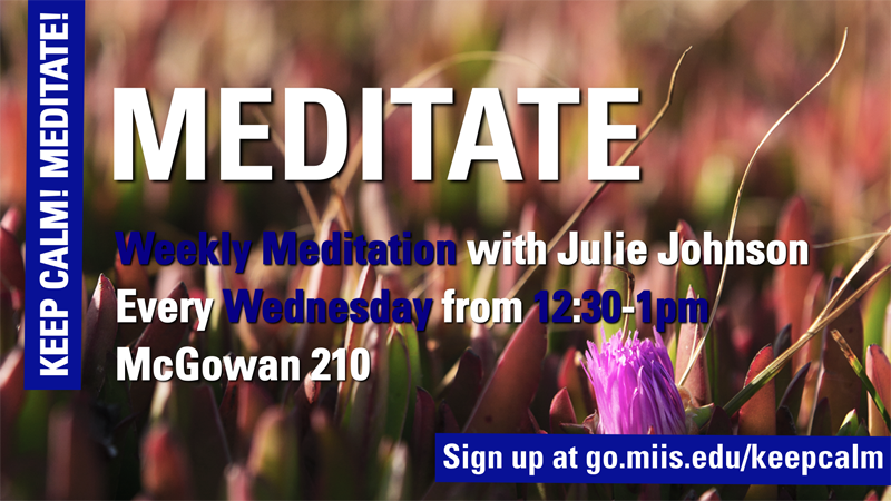 WELLNESS Meditate